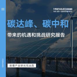 碳达峰、碳中和带来的机遇和挑战研究报告