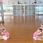 2015深圳市少儿舞蹈培训机构排行榜
